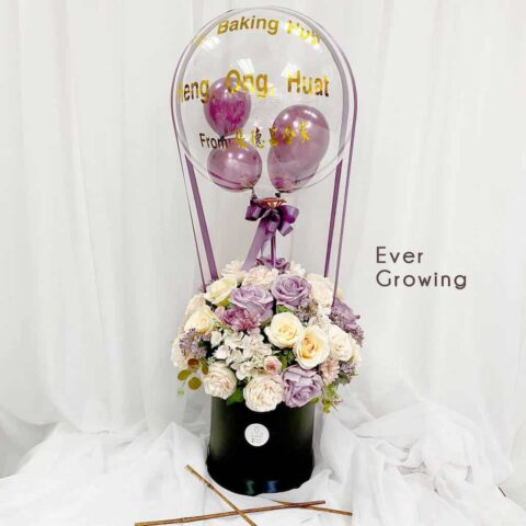 Flower Box Ballon - Ever Growing
