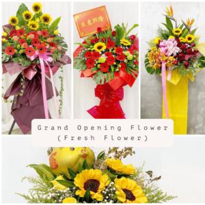Grand Opening Flower (Fresh)
